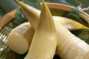 春笋的营养价值有哪些 吃春笋的好处